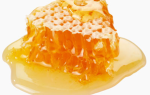 Мед с пергой и прополисом при климаксе